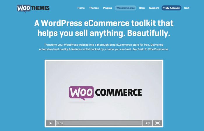woo commerce plugin
